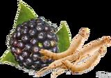 Элеутерококк (корень растения)