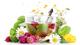 Лекарственные травы и растения